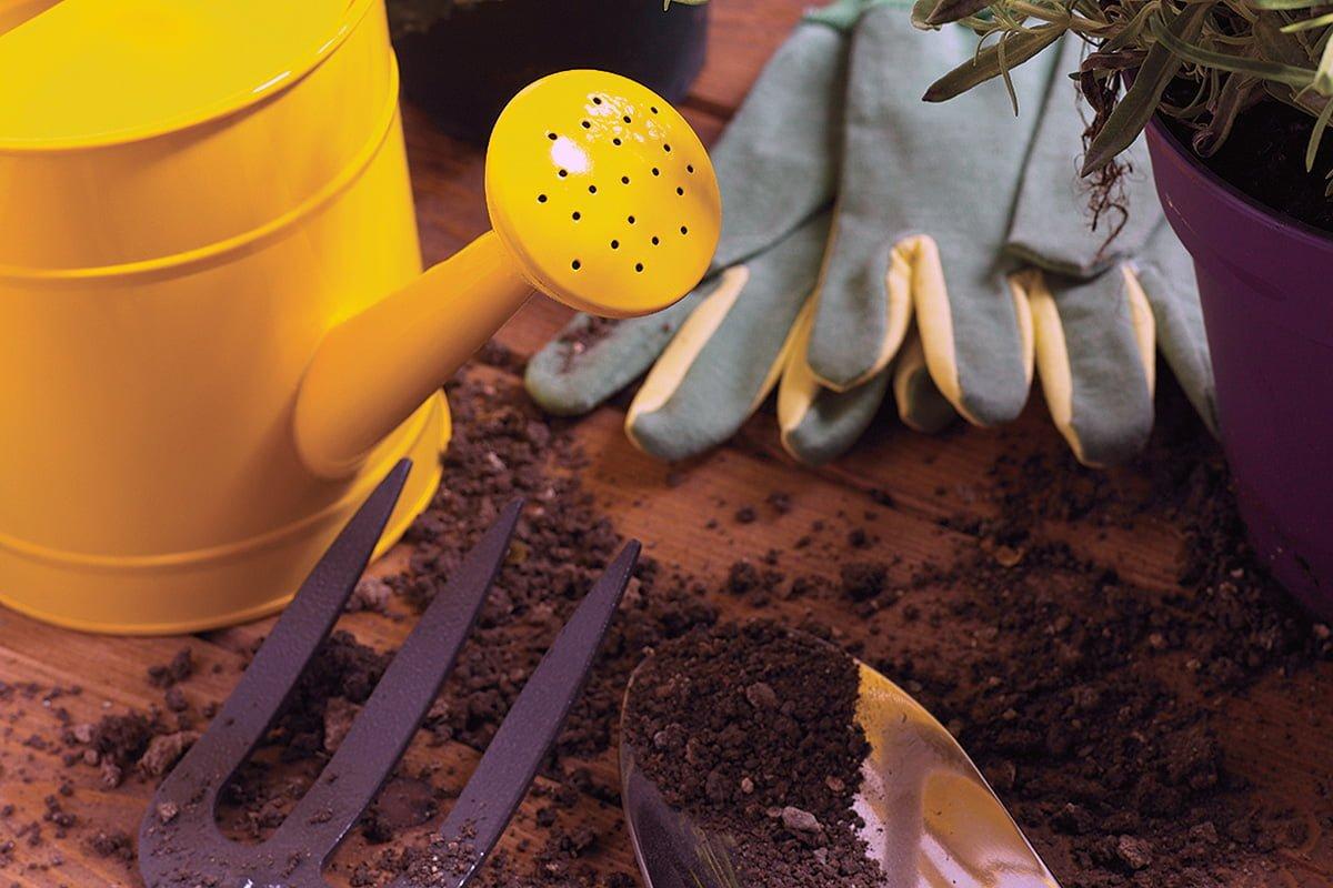 6 Essential Tasks to Prepare your Garden for Winter
